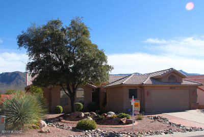 Saddlebrooke Single Family Home Active Contingent: 36031 S Mesa Ridge Drive