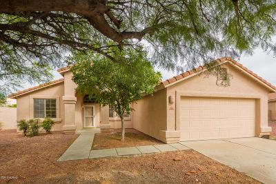 Single Family Home Active Contingent: 9133 E Arbab Court