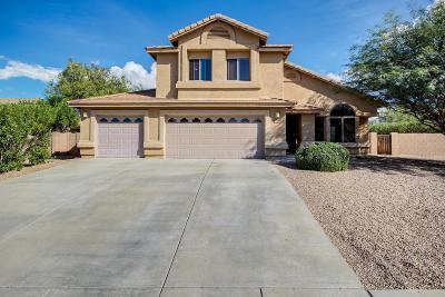 Vail Single Family Home For Sale: 969 S Grantham Drive