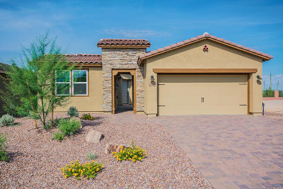 Marana Single Family Home For Sale: 14137 N Silverleaf Lane
