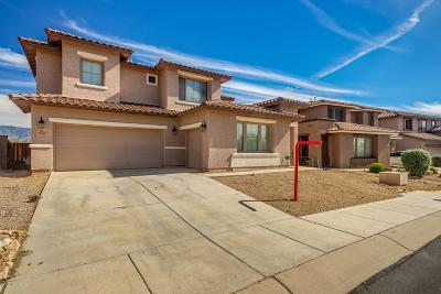 Marana Single Family Home For Sale: 12156 N Quail Feather Boulevard