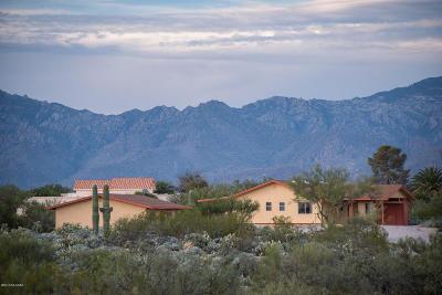 Single Family Home For Sale: 3522 S Saguaro Shadows Drive