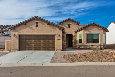Oracle Single Family Home For Sale: 32952 S Egret Trail
