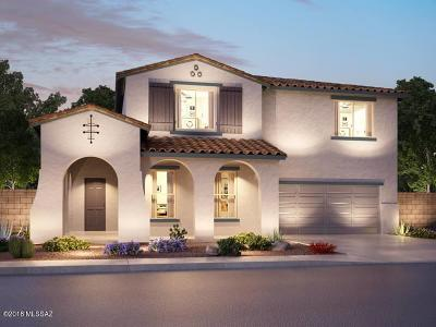 Marana Single Family Home For Sale: 12571 N Blondin Drive
