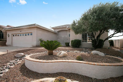 Saddlebrooke Single Family Home For Sale: 65799 E Rocky Terrace Drive