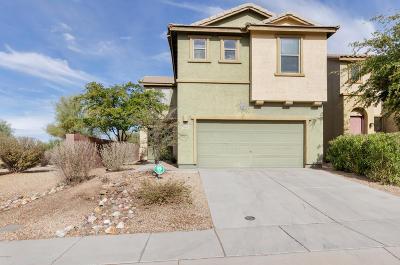 Sahuarita Single Family Home For Sale: 869 E Pecan Shaker Lane