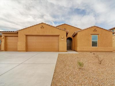 Marana Single Family Home For Sale: 12561 N Blondin Drive