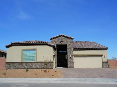 Tucson Single Family Home For Sale: 5625 W Jade Hollow Place