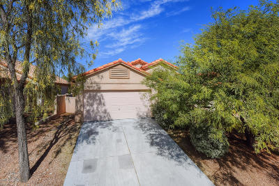 Oro Valley Single Family Home For Sale: 90 W Freddie Canyon Way