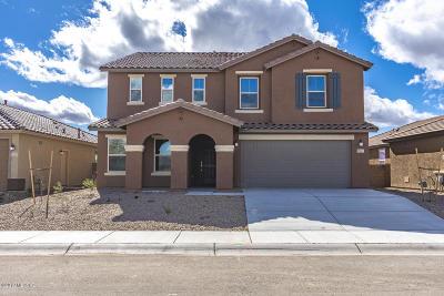 Marana Single Family Home For Sale: 11557 W Boll Bloom Drive