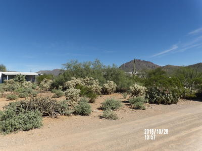 Tucson Residential Income For Sale: 8180 W Silver Flower Place