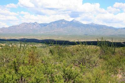 Tubac Residential Lots & Land For Sale: Terrel Avenue