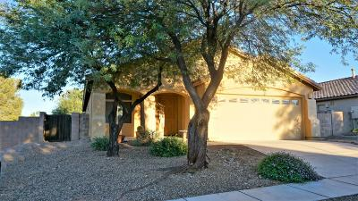 Pima County, Pinal County Single Family Home For Sale: 457 S Stone Bench Road