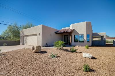 Tucson Single Family Home For Sale: 295 N Treighton Jon Place