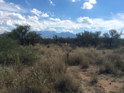 Green Valley Residential Lots & Land For Sale: W Calle Uno - A #2