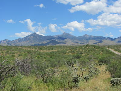 Tubac Residential Lots & Land For Sale: Morning Star #168