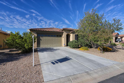 Marana Single Family Home For Sale: 12053 N Golden Mirror Drive