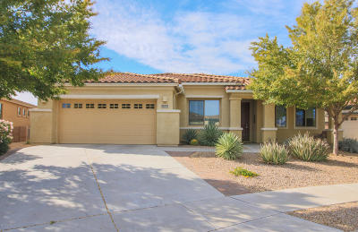 Single Family Home Active Contingent: 10126 S Kraft Drive