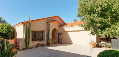 Pima County, Pinal County Single Family Home For Sale: 7379 E Vactor Ranch Trail