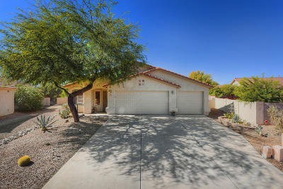 Oro Valley Single Family Home For Sale: 13355 N Wide View Drive