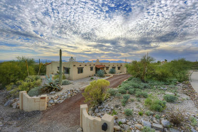 Tucson Single Family Home For Sale: 6857 N Green Mountain Place