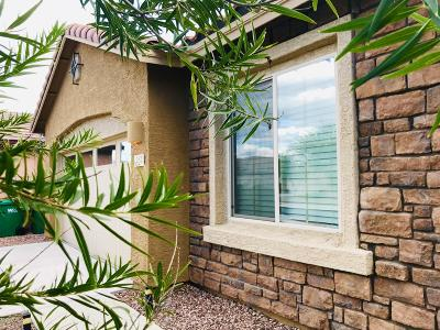 Oro Valley Single Family Home Active Contingent: 252 E Painted Pottery Place