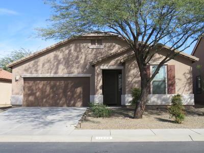 Marana Single Family Home For Sale: 12638 N Greenberry Drive