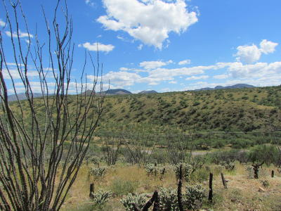 Tubac Residential Lots & Land For Sale: Chacata Court #4