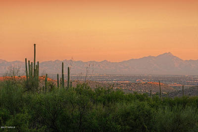 Tucson Residential Lots & Land Active Contingent: 6565 N Thimble Pass