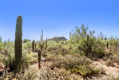 Pima County Residential Lots & Land For Sale: Reserve At Saguaro Park #1-15