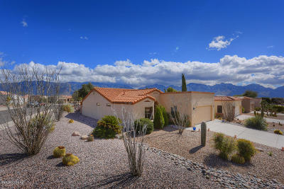 Oro Valley Single Family Home Active Contingent: 14350 N Rusty Gate Trail