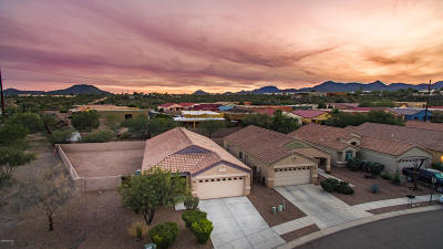 Tucson Single Family Home For Sale: 2411 W Prichett Place