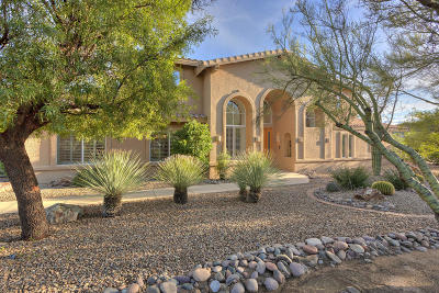 Sahuarita Single Family Home For Sale: 1645 W Twin Buttes Road