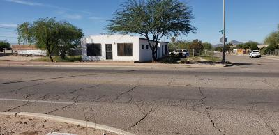 Tucson Single Family Home For Sale: 2502 S Park Avenue