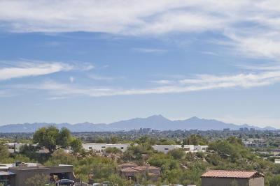 Tucson Single Family Home For Sale: 740 E Mescal Place
