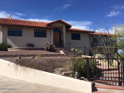 Rio Rico Single Family Home For Sale: 422 Camino Cumbre