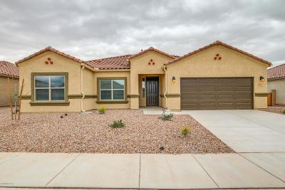 Marana Single Family Home For Sale: 10002 N Saguaro Bloom Way