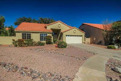Tucson Single Family Home For Sale: 980 W Graythorn Place