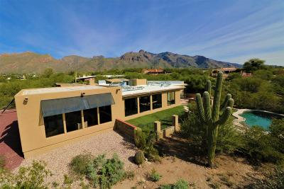 Tucson Single Family Home For Sale: 6640 N Camino Padre Isidoro