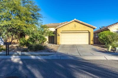 Paseo Del Rio Single Family Home For Sale: 5086 N River Fringe Drive