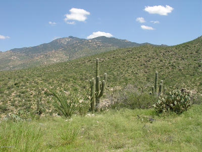 Vail Residential Lots & Land For Sale: 7301 S Red Hill Road #84