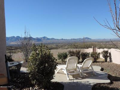 Rio Rico Single Family Home For Sale: 357 Calle Muelle