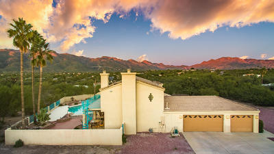 Tucson Single Family Home For Sale: 10461 E Calle Vaqueros
