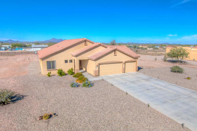 Marana Single Family Home For Sale: 10199 N Avra Vista Drive