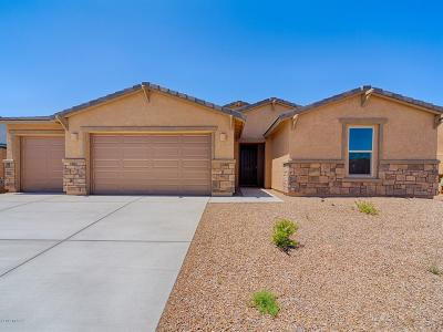 Marana Single Family Home For Sale: 12551 N Blondin Drive
