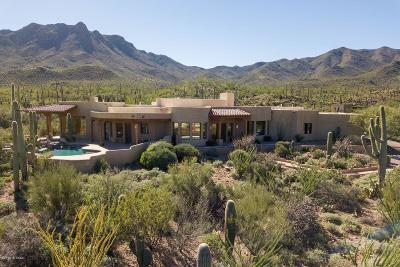 Tucson Single Family Home For Sale: 6929 W Sweetwater Drive