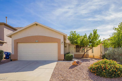 Tucson Single Family Home For Sale: 8766 E Chimney Spring Drive