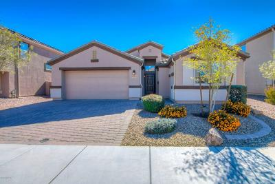 Marana Single Family Home For Sale: 8829 W Atlow Road