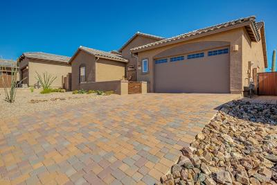 Marana Single Family Home Active Contingent: 14318 N Whitehorn Place