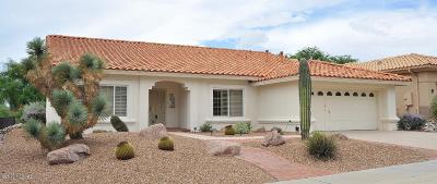 Oro Valley Single Family Home For Sale: 14191 N Cirrus Hill Drive